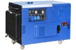 Дизель генератор TSS SDG 12000EHS